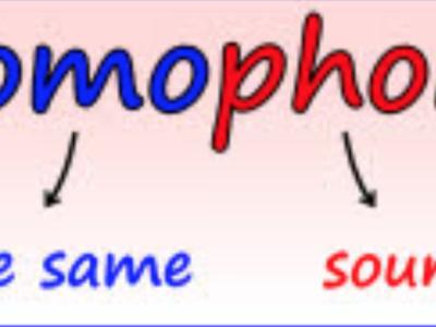 発音とスペル17『homophones / homonyms』